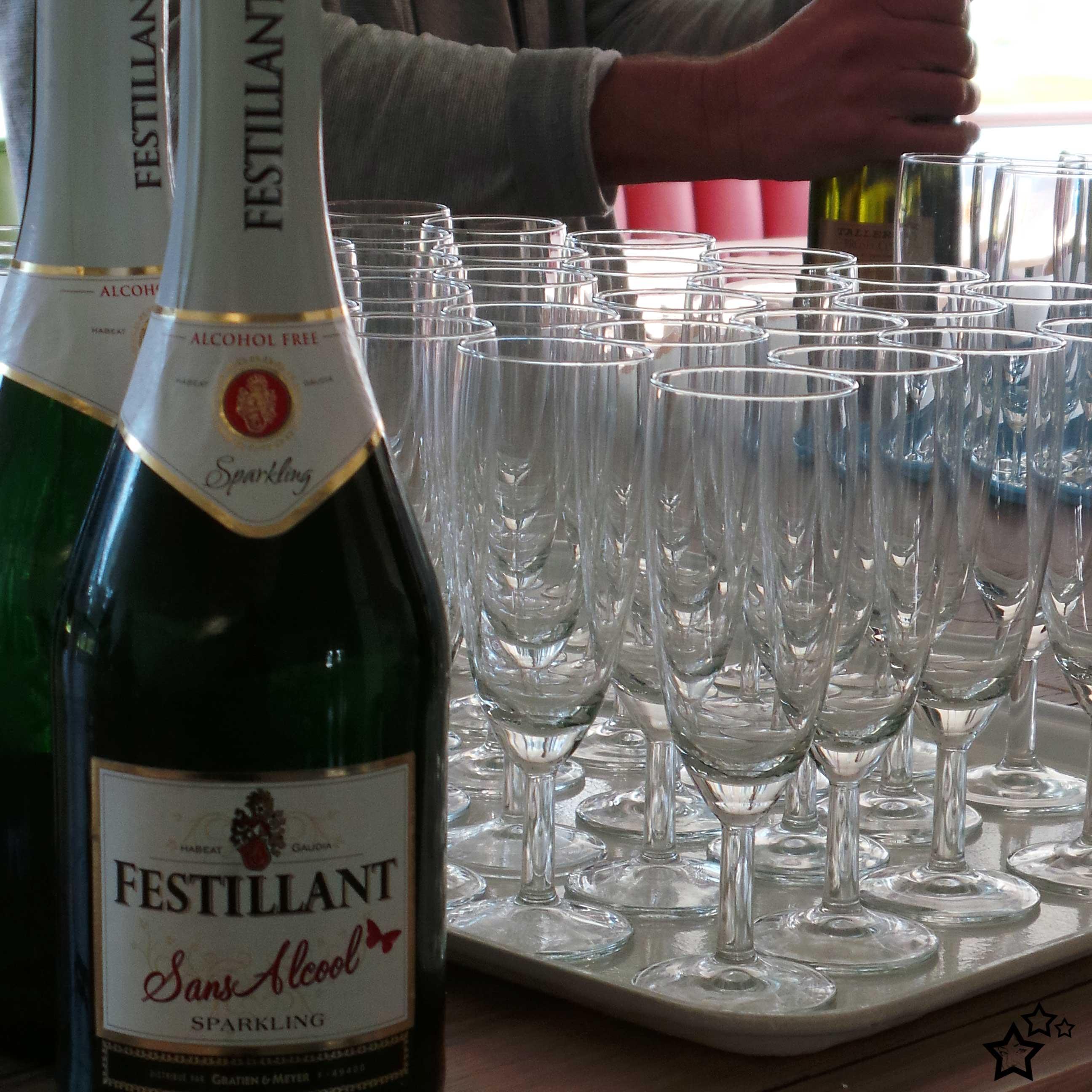 Champagne | Symposium | Boek | Liefde zonder vlinders | Merel van Groningen